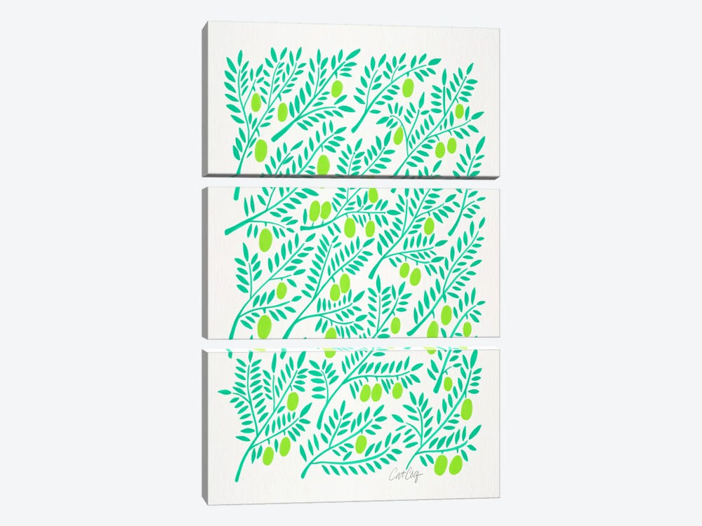Olive Branches II by Cat Coquillette 3-piece Canvas Artwork