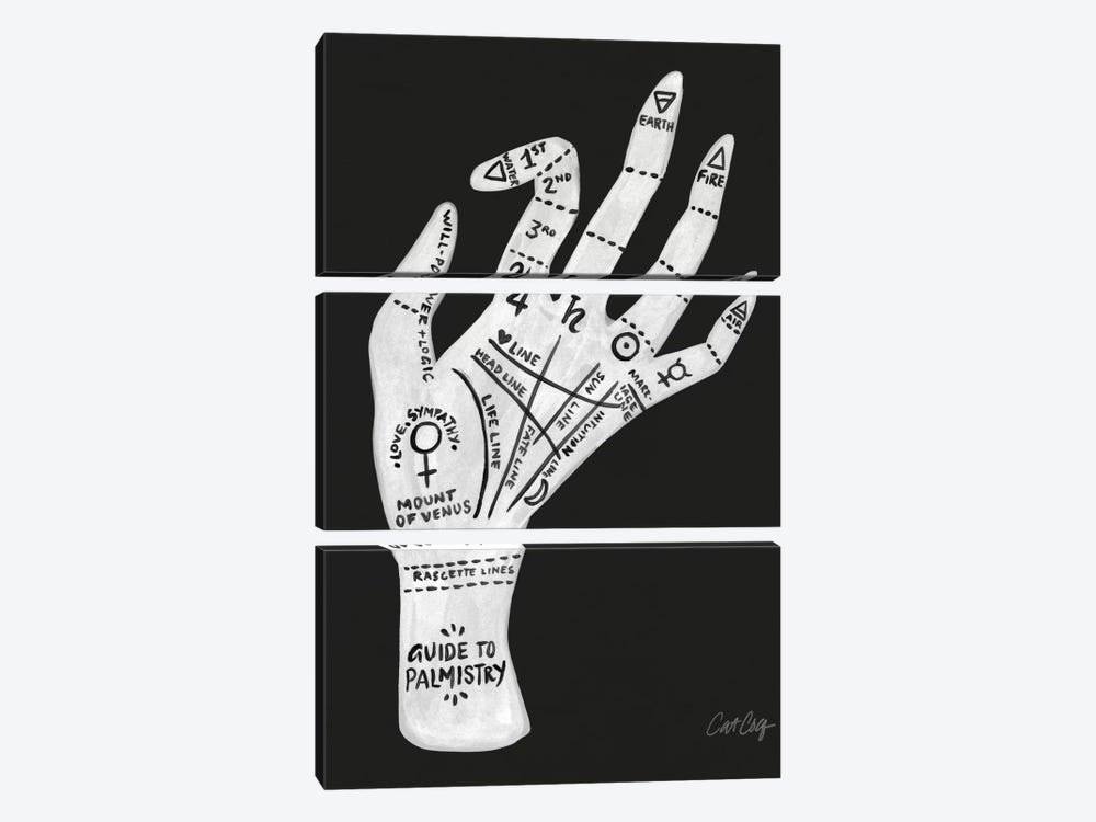 Palmistry II by Cat Coquillette 3-piece Canvas Artwork