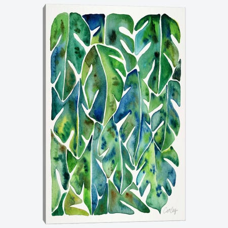 Philodendron I Canvas Print #CCE239} by Cat Coquillette Canvas Art