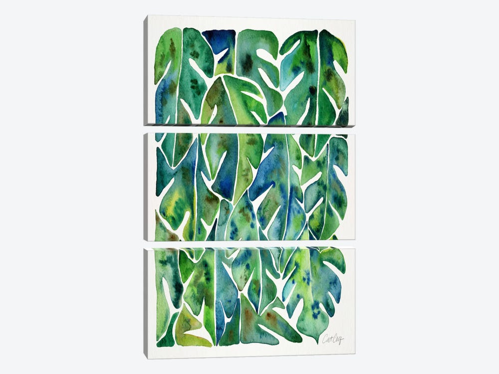 Philodendron I by Cat Coquillette 3-piece Canvas Art Print