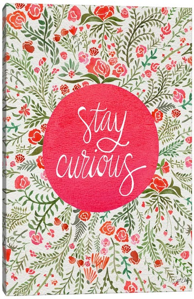 Stay Curious II Canvas Print #CCE254
