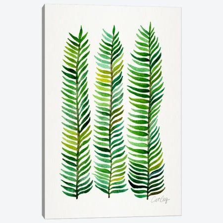Stem Trio II Canvas Print #CCE256} by Cat Coquillette Canvas Art Print