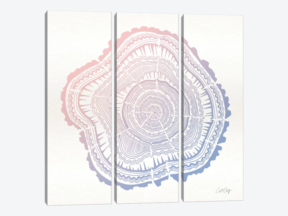 Tree Rings I by Cat Coquillette 3-piece Canvas Art Print