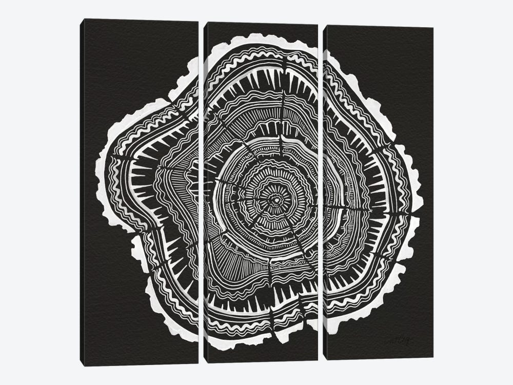 Tree Rings II by Cat Coquillette 3-piece Canvas Art
