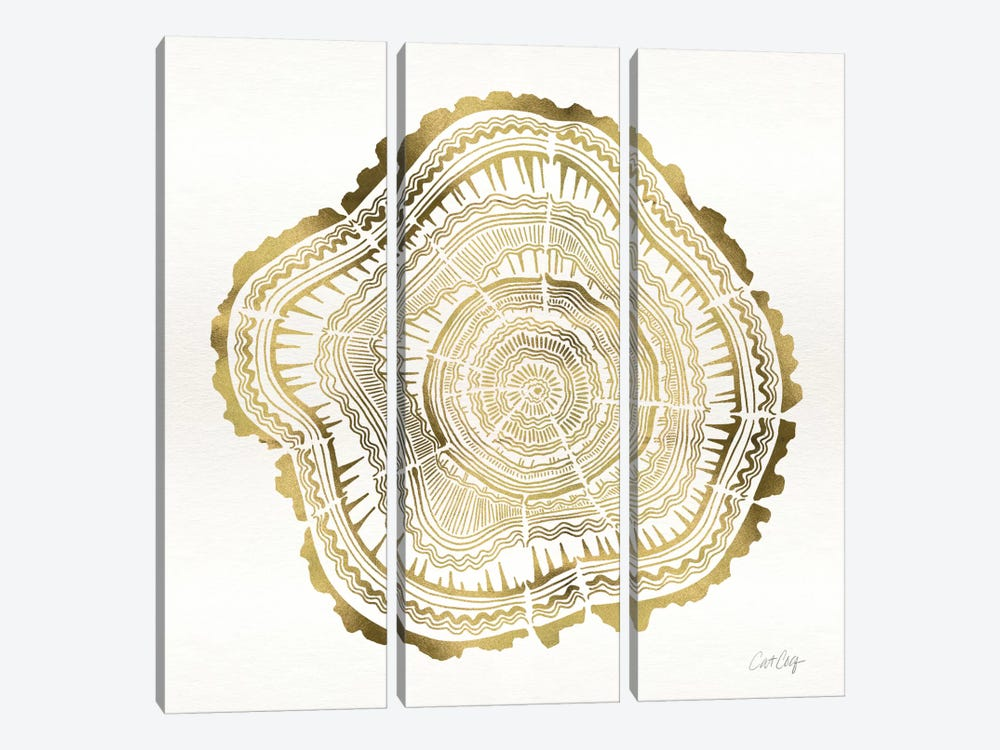 Tree Rings III by Cat Coquillette 3-piece Canvas Print