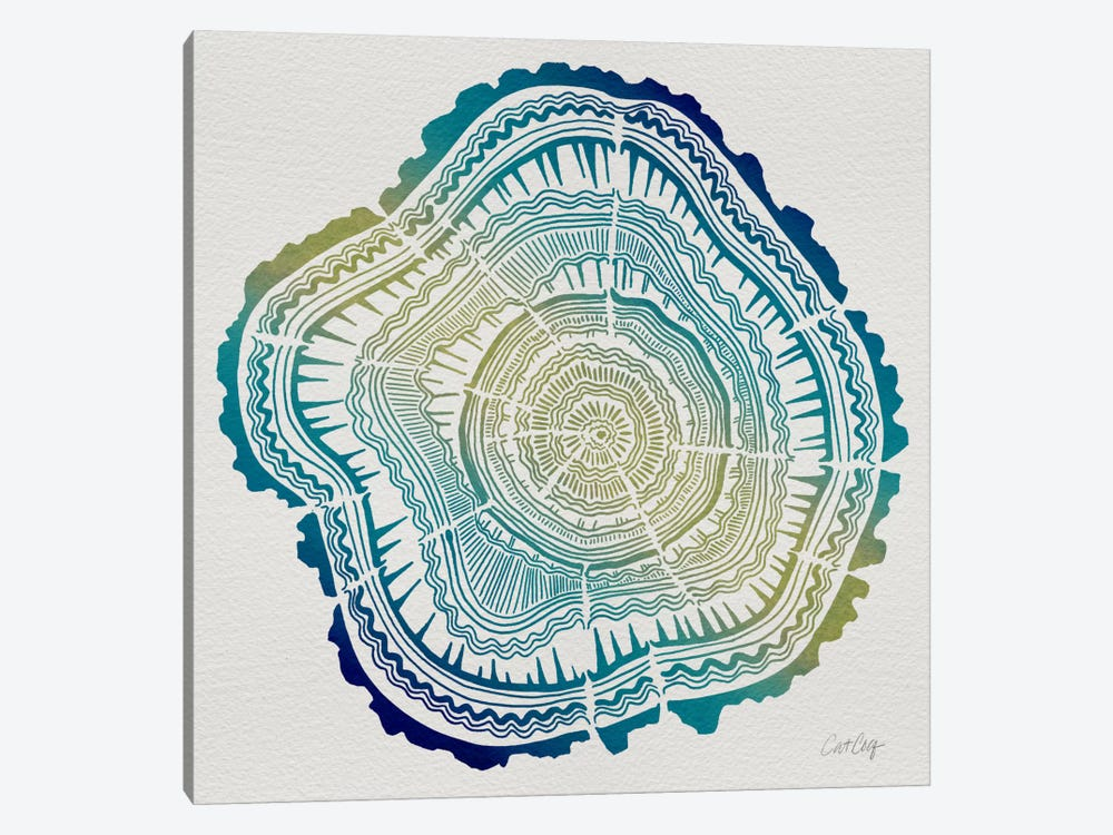 Tree Rings V by Cat Coquillette 1-piece Canvas Print