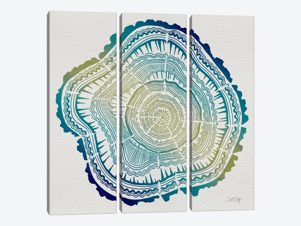 Tree Rings V by Cat Coquillette 3-piece Canvas Art Print