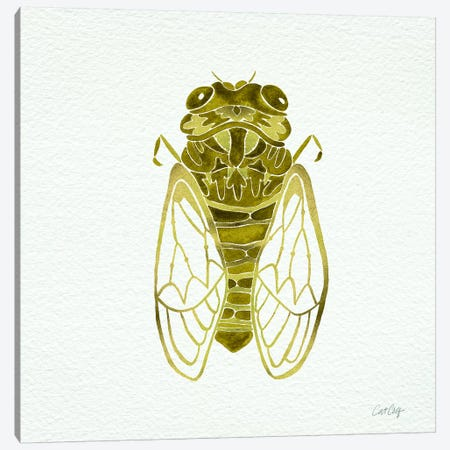 Cicada Gold  Artprint Canvas Print #CCE2} by Cat Coquillette Canvas Print