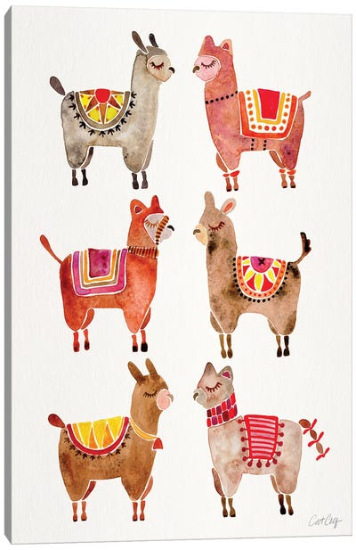 Alpacas Canvas Art Print