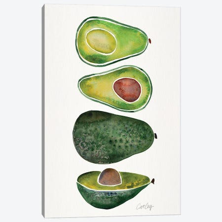 Avocados Canvas Print #CCE319} by Cat Coquillette Canvas Art Print