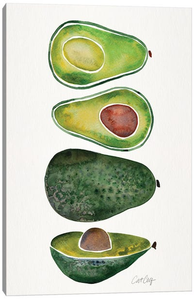 Avocados by Cat Coquillette Canvas Art Print