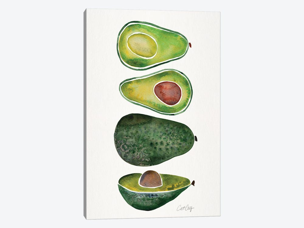Avocados by Cat Coquillette 1-piece Canvas Wall Art