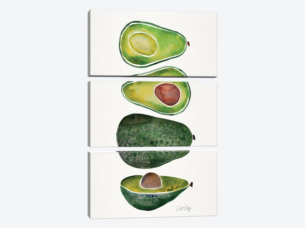 Avocados by Cat Coquillette 3-piece Canvas Art
