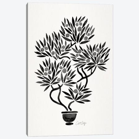 Black Bonsai Orange Canvas Print #CCE321} by Cat Coquillette Canvas Wall Art