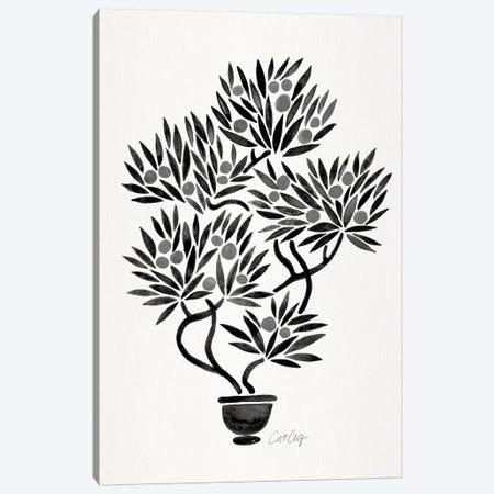 Black Bonsai Orange Canvas Print #CCE321} by Cat Coquillette Canvas Wall Art