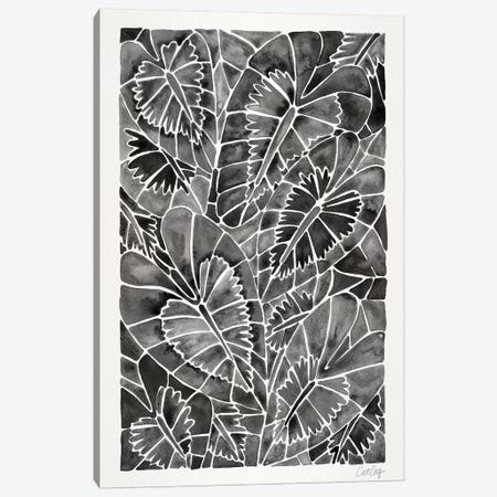 Black Schismatoglottis Calyptrata 3-Piece Canvas #CCE328} by Cat Coquillette Canvas Wall Art