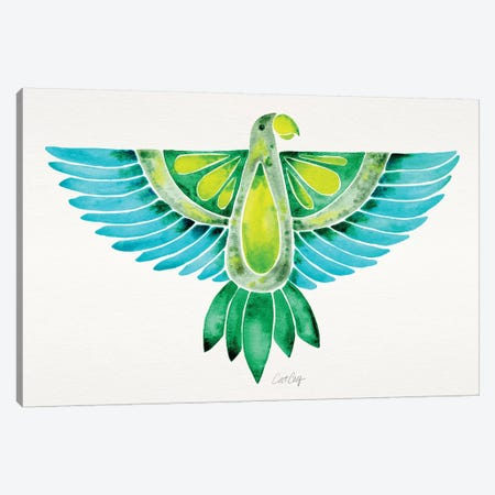 Blue & Green Parrot Canvas Print #CCE336} by Cat Coquillette Canvas Art