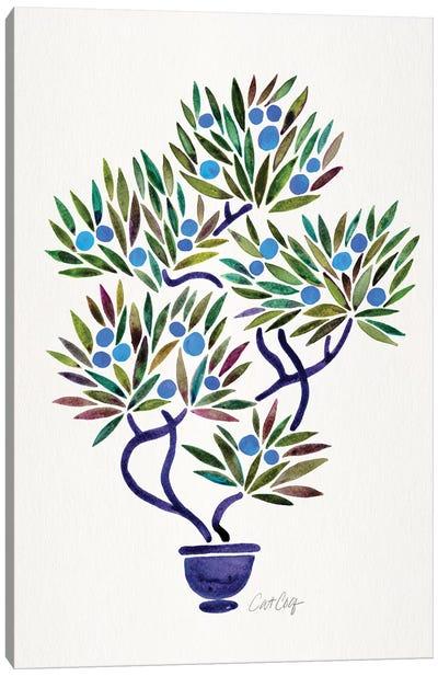 Blue Bonsai Orange Canvas Art Print