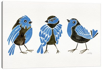 Blue Finches Canvas Art Print