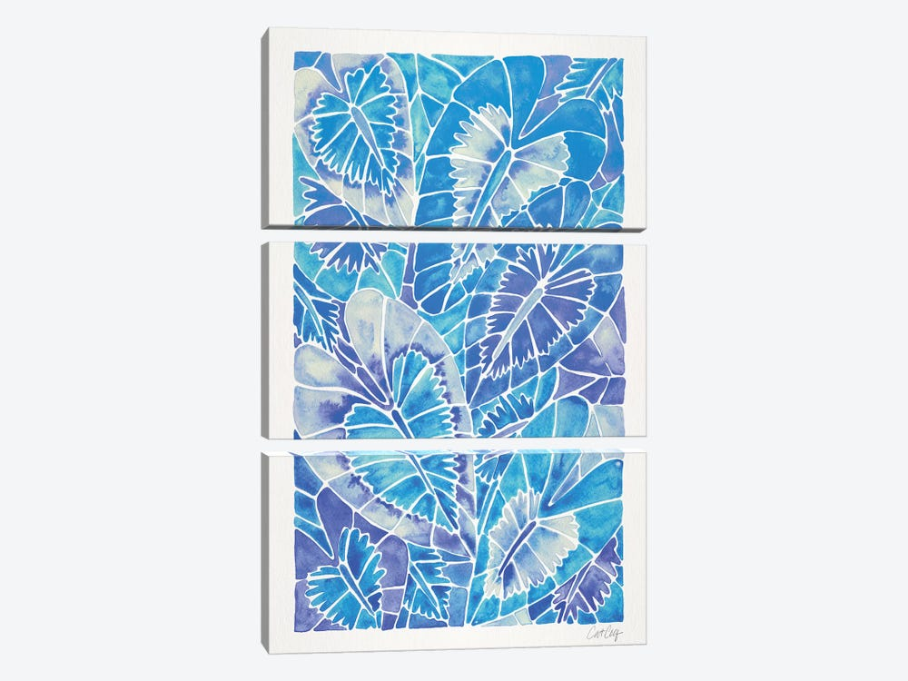 Blue Schismatoglottis Calyptrata by Cat Coquillette 3-piece Canvas Art Print