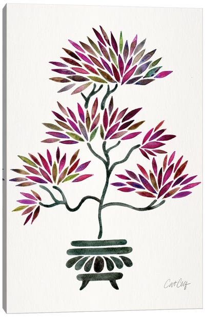 Fuchsia Bonsai Canvas Art Print