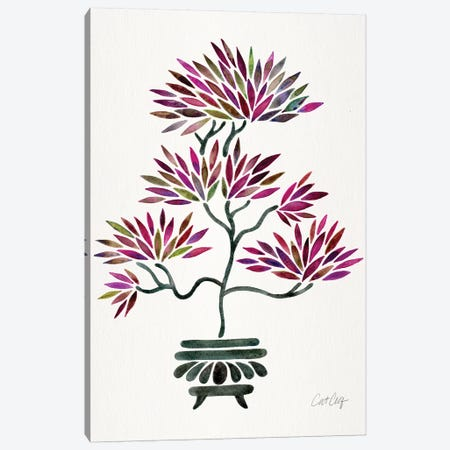 Fuchsia Bonsai 3-Piece Canvas #CCE360} by Cat Coquillette Canvas Artwork