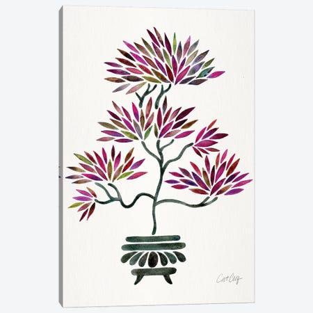 Fuchsia Bonsai Canvas Print #CCE360} by Cat Coquillette Canvas Artwork