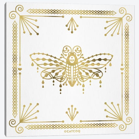 Gold Death Head Moth Canvas Print #CCE368} by Cat Coquillette Canvas Art