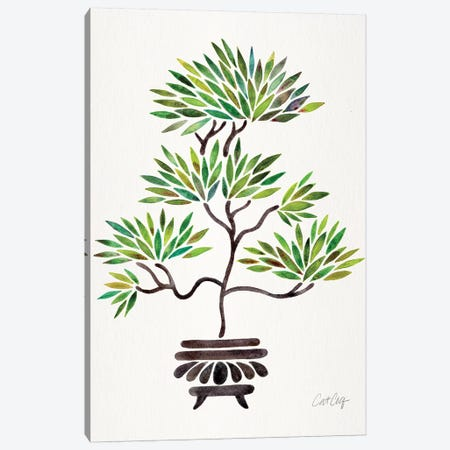Green Bonsai Canvas Print #CCE372} by Cat Coquillette Canvas Print