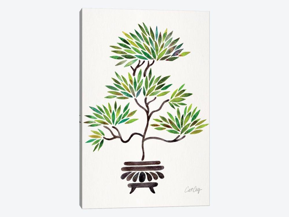 Green Bonsai by Cat Coquillette 1-piece Canvas Print