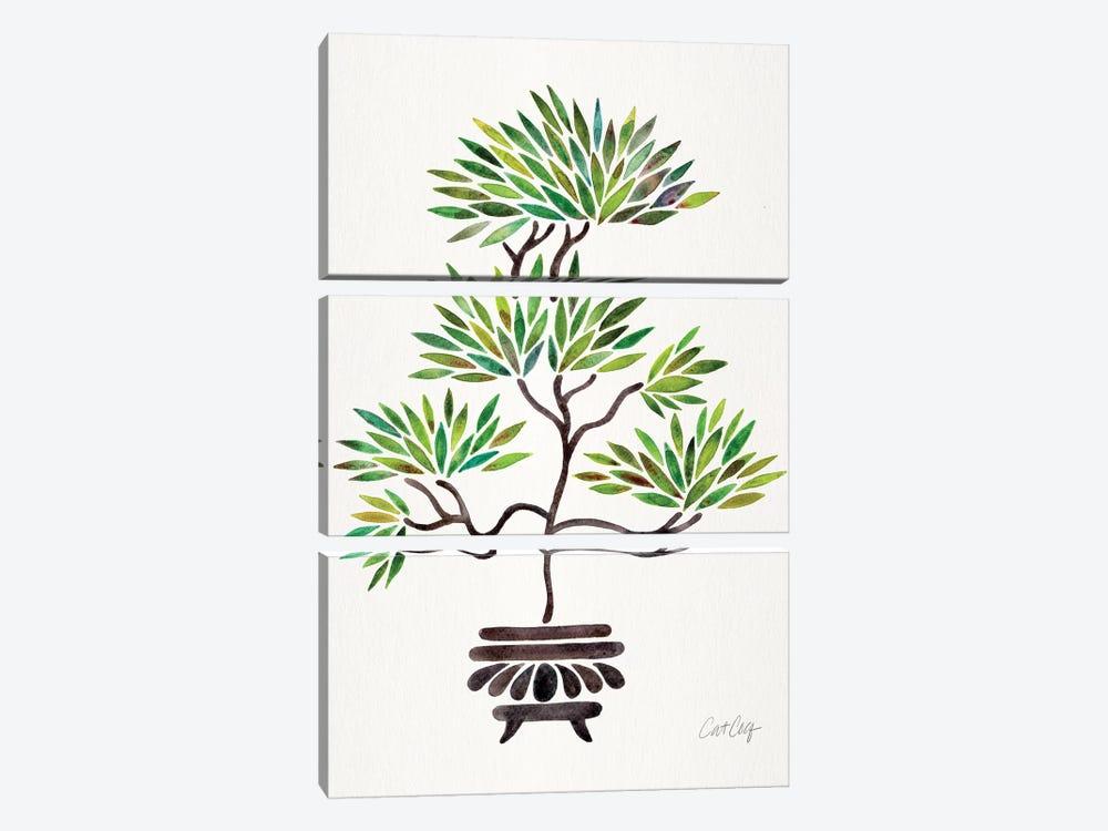 Green Bonsai by Cat Coquillette 3-piece Canvas Art Print