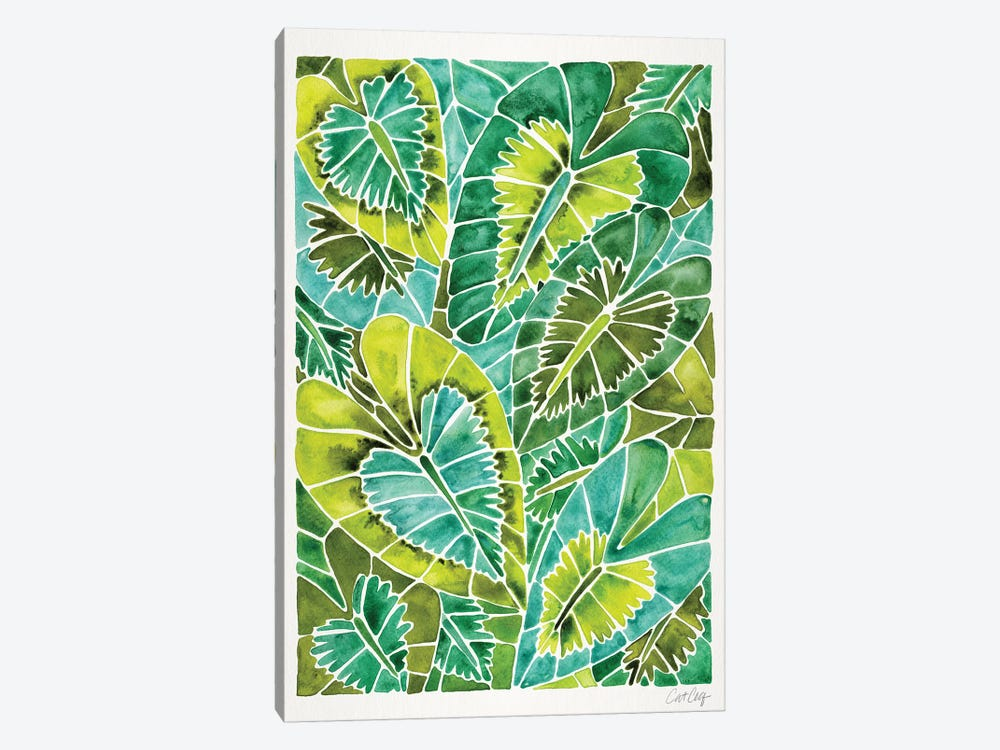 Green Schismatoglottis Calyptrata by Cat Coquillette 1-piece Canvas Print