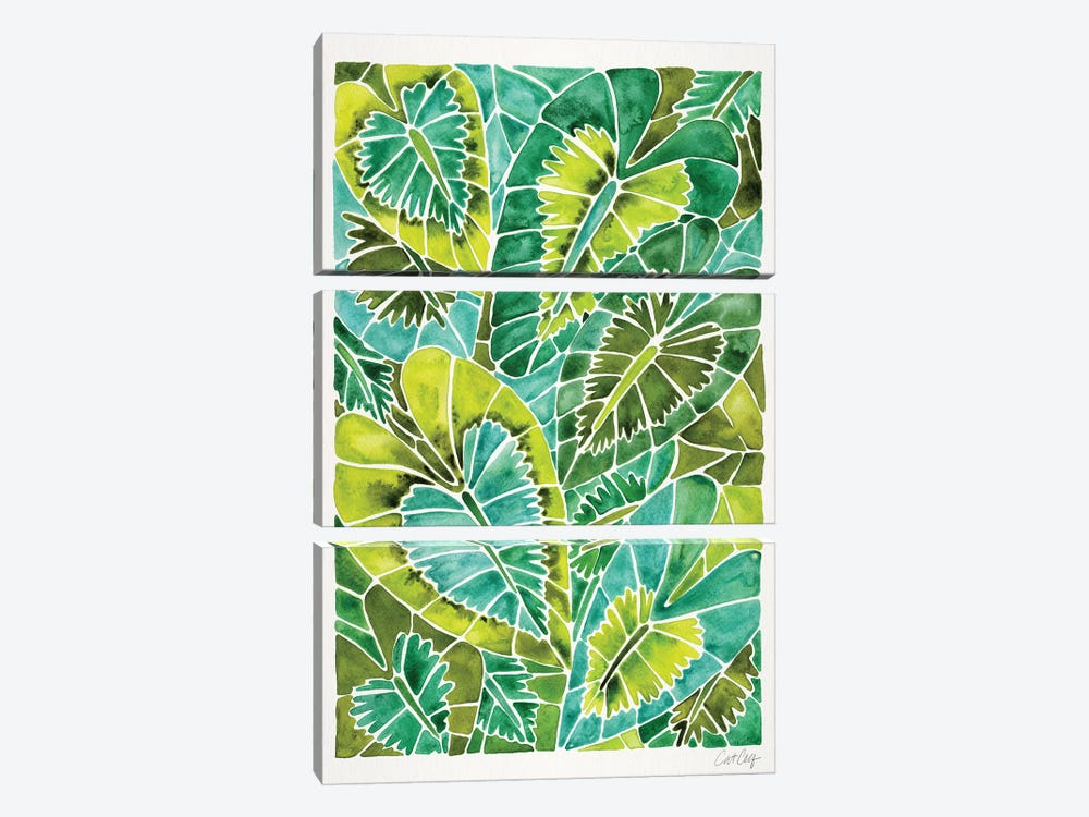 Green Schismatoglottis Calyptrata by Cat Coquillette 3-piece Canvas Art Print