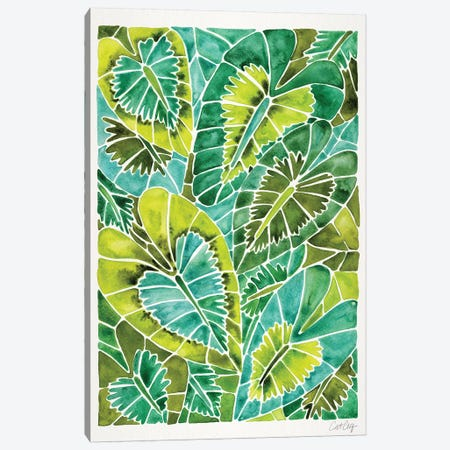 Green Schismatoglottis Calyptrata 3-Piece Canvas #CCE374} by Cat Coquillette Canvas Art