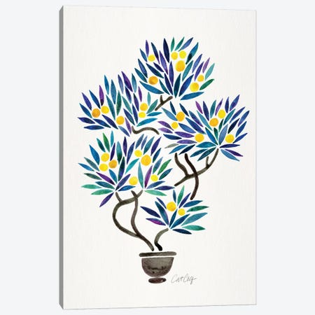 Lemon Bonsai Orange Canvas Print #CCE381} by Cat Coquillette Canvas Wall Art