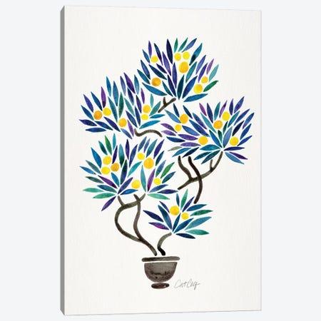 Lemon Bonsai Orange Canvas Print #CCE381} by Cat Coquillette Canvas Wall Art