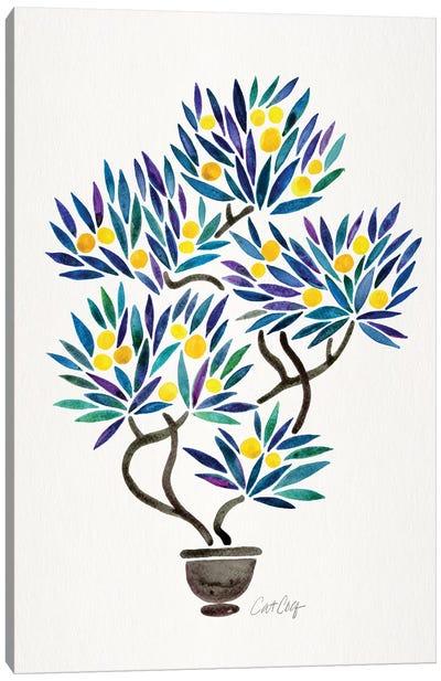Lemon Bonsai Orange Canvas Art Print