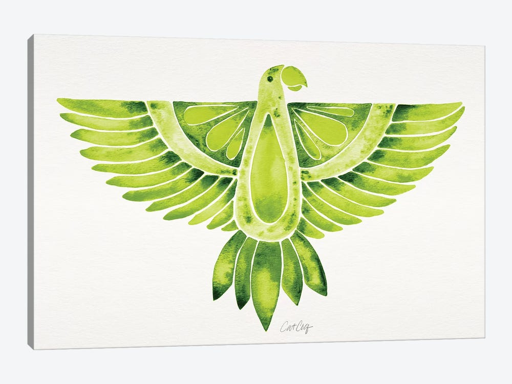 Lime Parrot by Cat Coquillette 1-piece Canvas Print