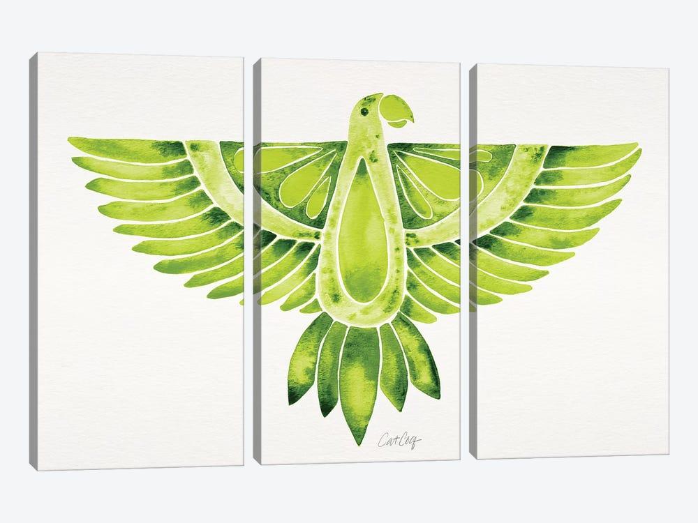 Lime Parrot by Cat Coquillette 3-piece Canvas Art Print
