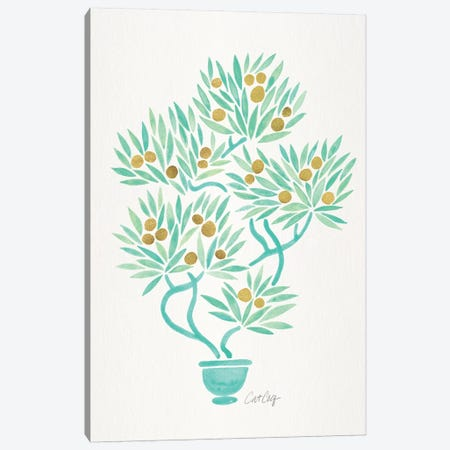Mint Bonsai Orange Canvas Print #CCE394} by Cat Coquillette Canvas Artwork