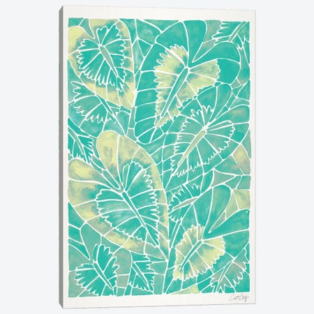 Mint Schismatoglottis Calyptrata 3-Piece Canvas #CCE397} by Cat Coquillette Canvas Art