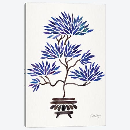 Navy Bonsai Canvas Print #CCE400} by Cat Coquillette Art Print