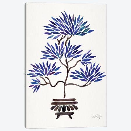 Navy Bonsai Canvas Print #CCE400} by Cat Coquillette Art Print