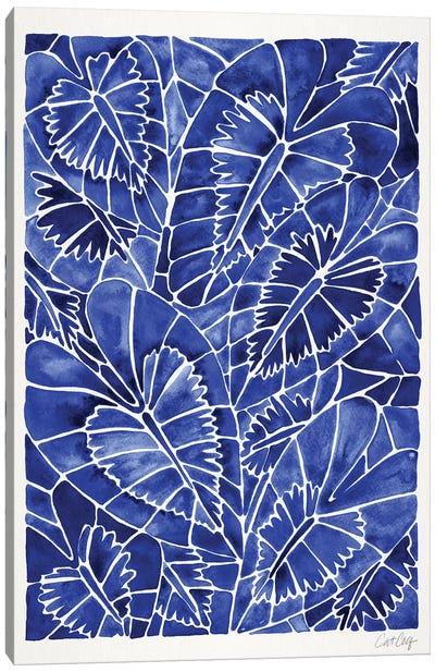 Navy Schismatoglottis Calyptrata Canvas Art Print
