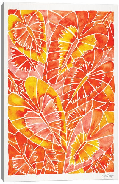Orange Schismatoglottis Calyptrata by Cat Coquillette Canvas Art Print