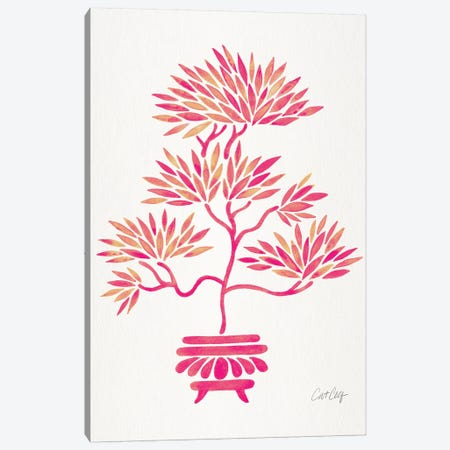 Pink Bonsai Canvas Print #CCE416} by Cat Coquillette Art Print