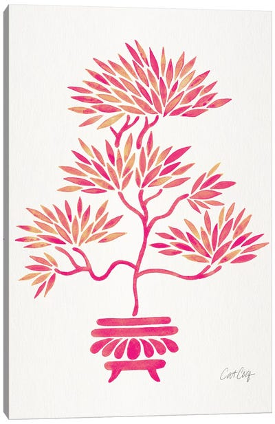 Pink Bonsai Canvas Art Print