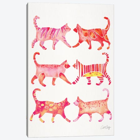 Pink Cat Collection Canvas Print #CCE417} by Cat Coquillette Canvas Print
