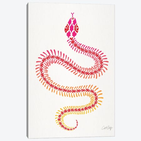 Pink Ombré Snake Skeleton Canvas Print #CCE421} by Cat Coquillette Canvas Art Print