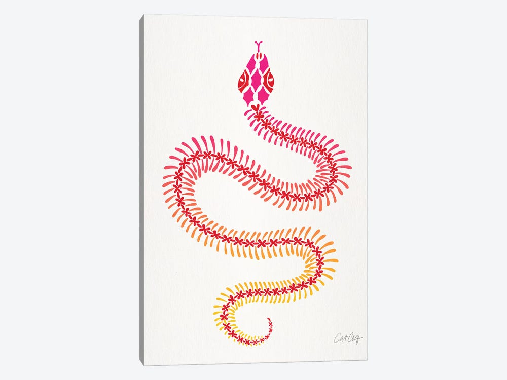 Pink Ombré Snake Skeleton by Cat Coquillette 1-piece Canvas Wall Art